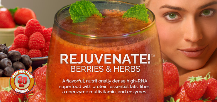 rejuvenate! berries & herbs superfood