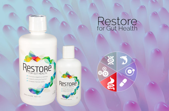 Restore gut health hpdi foundational supplements program