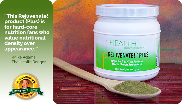 rejuvenate superfood foundational supplements