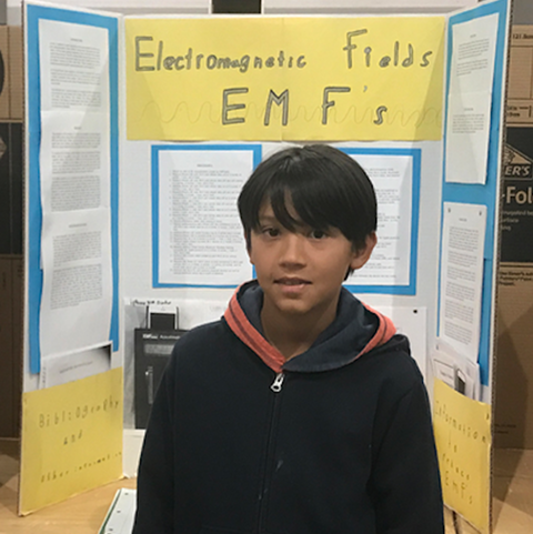 EMF electromagnetic fields project