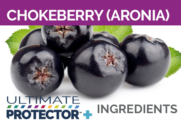 Ultimate Protector+ Includes Chokeberry