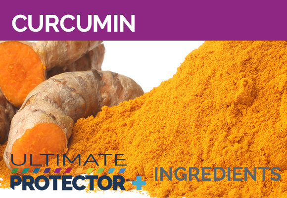Ultimate Protector+ Includes Curcumin
