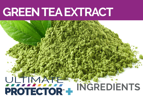 Ultimate Protector+ Includes Green Tea Extract